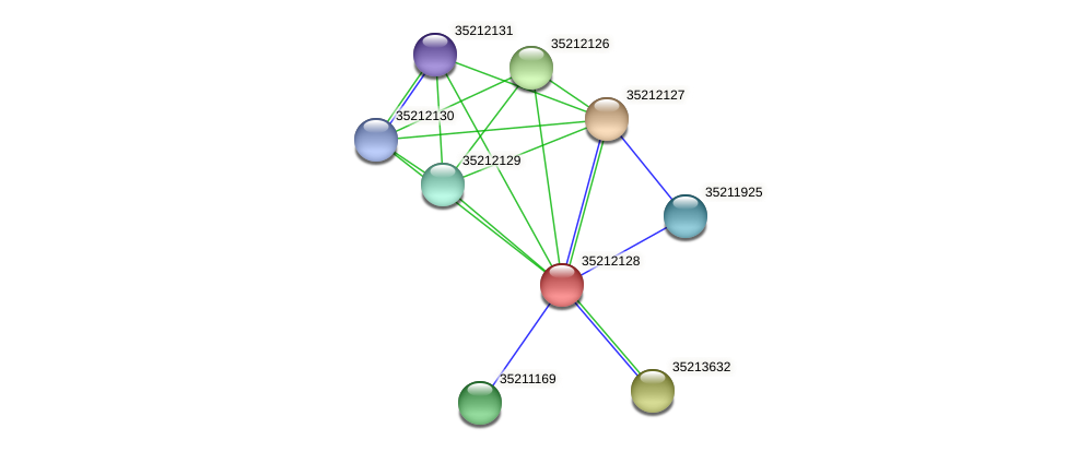 gll1563 protein (Gloeobacter violaceus) - STRING interaction network