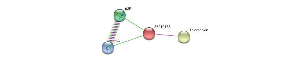 gll1598 protein (Gloeobacter violaceus) - STRING interaction network