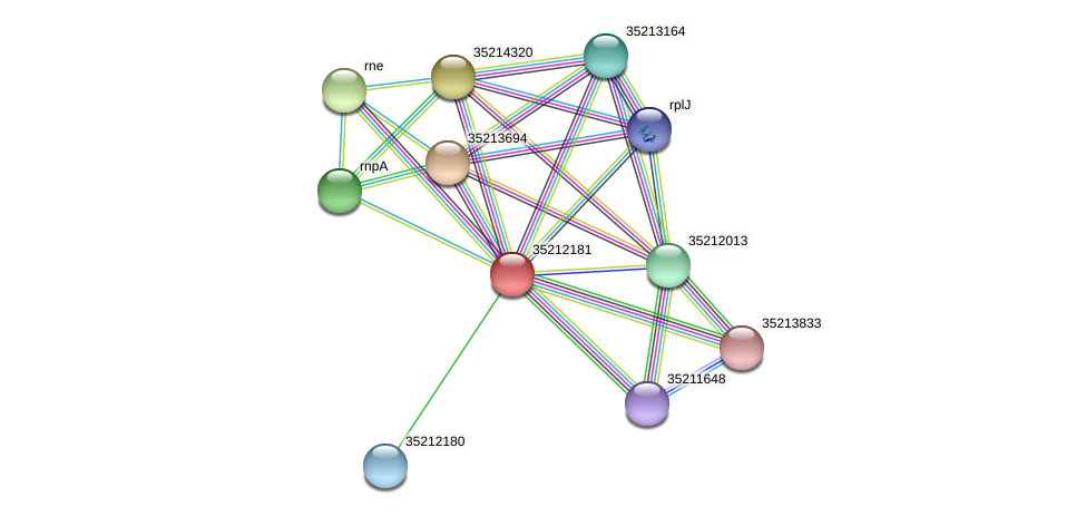 gll1616 protein (Gloeobacter violaceus) - STRING interaction network