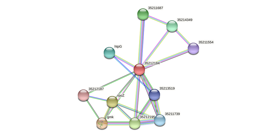 gll1619 protein (Gloeobacter violaceus) - STRING interaction network