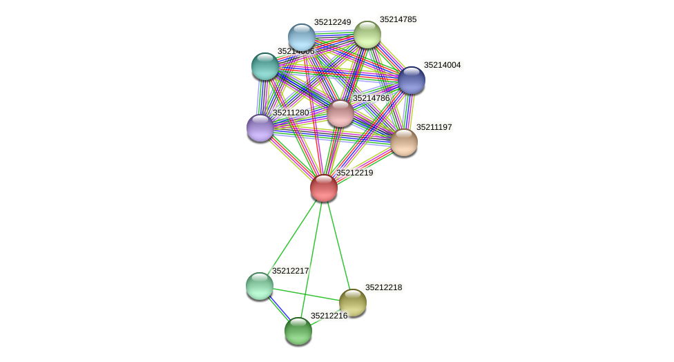 gll1654 protein (Gloeobacter violaceus) - STRING interaction network
