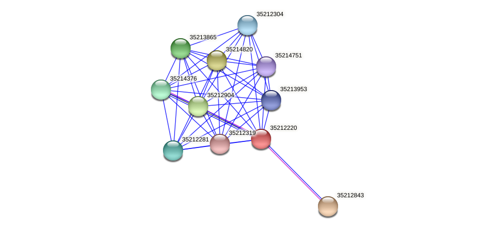 gll1655 protein (Gloeobacter violaceus) - STRING interaction network