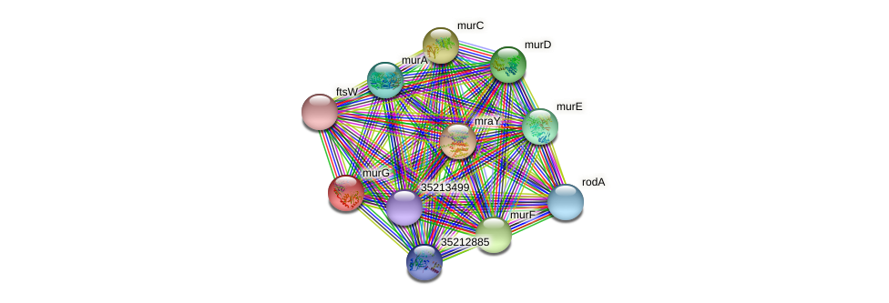 gll1671 protein (Gloeobacter violaceus) - STRING interaction network