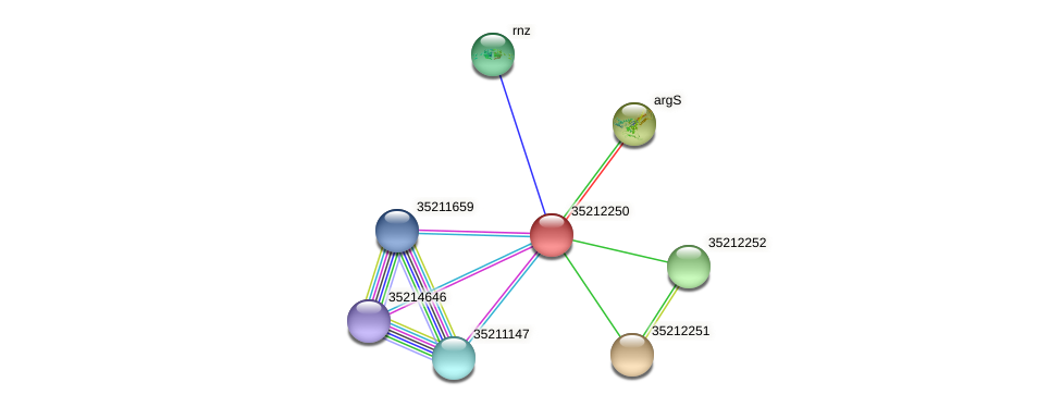 gll1685 protein (Gloeobacter violaceus) - STRING interaction network