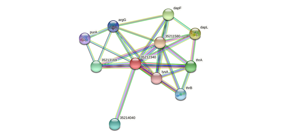 gll1774 protein (Gloeobacter violaceus) - STRING interaction network