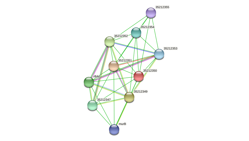 gll1784 protein (Gloeobacter violaceus) - STRING interaction network