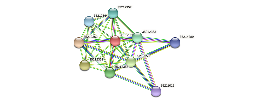 gll1794 protein (Gloeobacter violaceus) - STRING interaction network