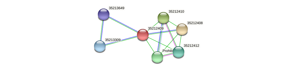 gll1843 protein (Gloeobacter violaceus) - STRING interaction network