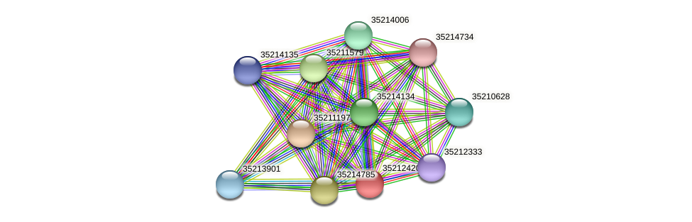 gll1854 protein (Gloeobacter violaceus) - STRING interaction network