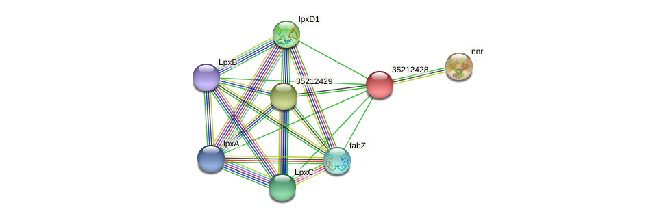 gll1862 protein (Gloeobacter violaceus) - STRING interaction network