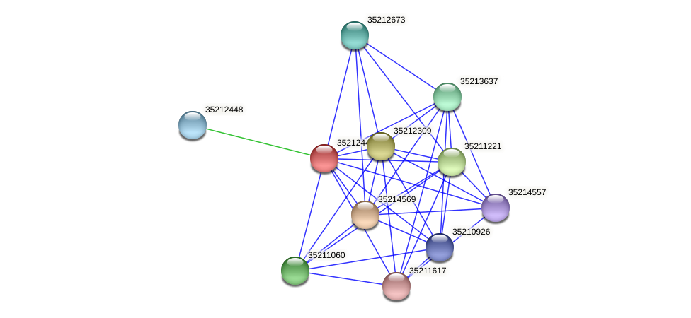 gll1881 protein (Gloeobacter violaceus) - STRING interaction network