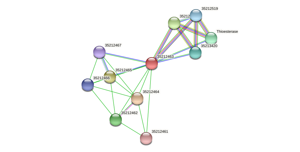 gll1897 protein (Gloeobacter violaceus) - STRING interaction network