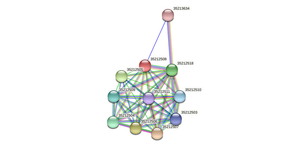 gll1942 protein (Gloeobacter violaceus) - STRING interaction network