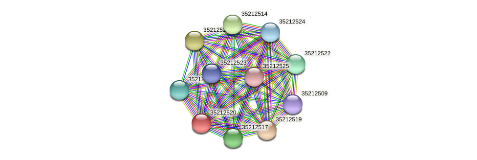 gll1954 protein (Gloeobacter violaceus) - STRING interaction network