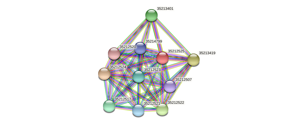 gll1959 protein (Gloeobacter violaceus) - STRING interaction network