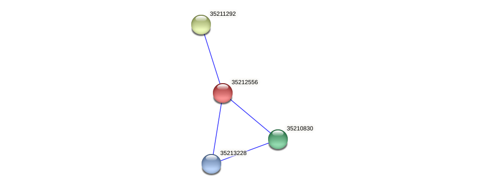 gll1989 protein (Gloeobacter violaceus) - STRING interaction network