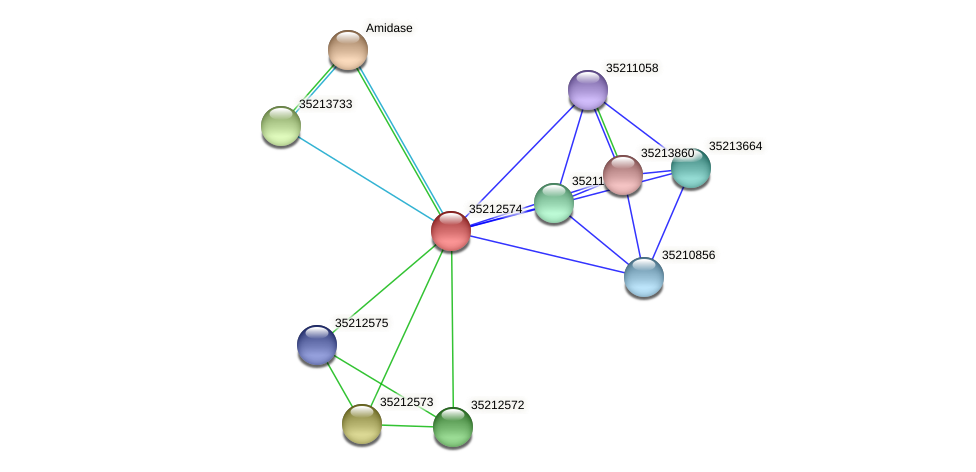 gll2007 protein (Gloeobacter violaceus) - STRING interaction network