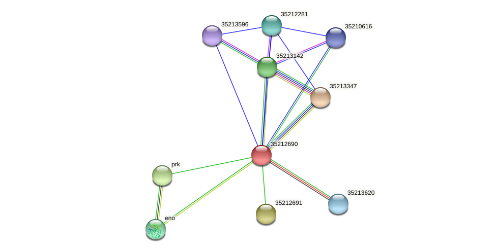 gll2123 protein (Gloeobacter violaceus) - STRING interaction network