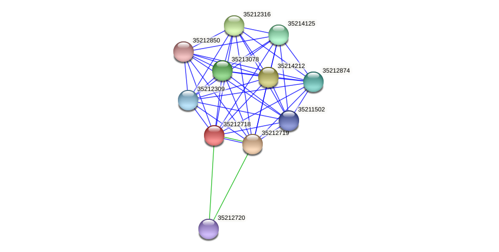 gll2151 protein (Gloeobacter violaceus) - STRING interaction network