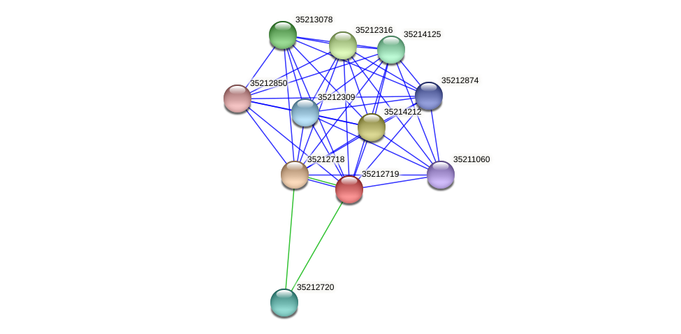 gll2152 protein (Gloeobacter violaceus) - STRING interaction network