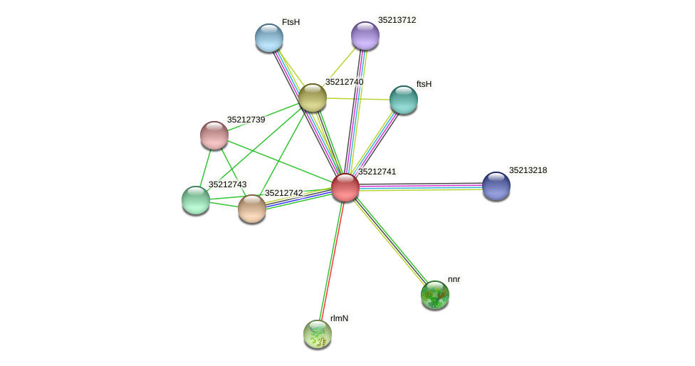 gll2174 protein (Gloeobacter violaceus) - STRING interaction network
