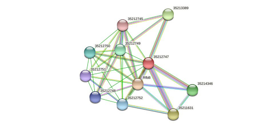 gll2180 protein (Gloeobacter violaceus) - STRING interaction network