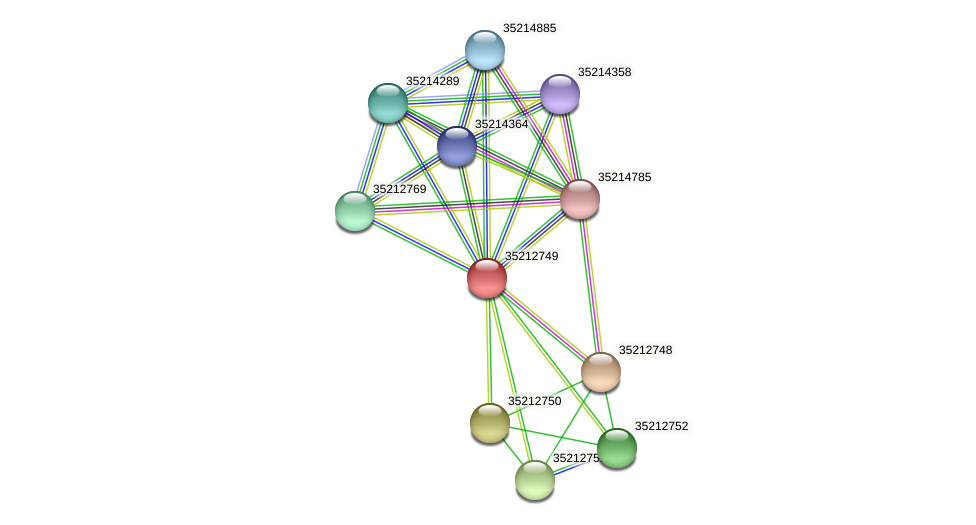gll2182 protein (Gloeobacter violaceus) - STRING interaction network