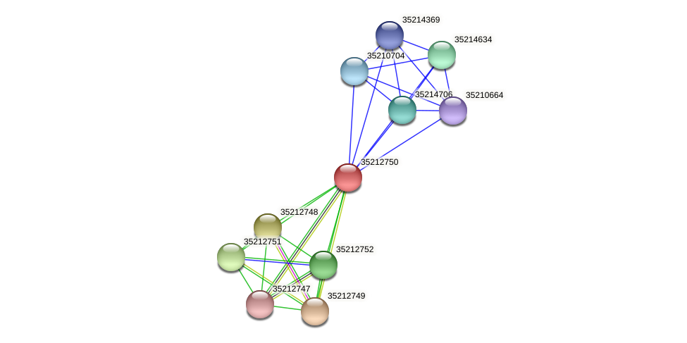 gll2183 protein (Gloeobacter violaceus) - STRING interaction network