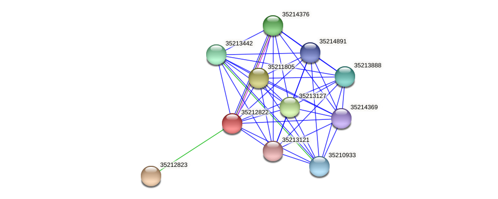 gll2254 protein (Gloeobacter violaceus) - STRING interaction network