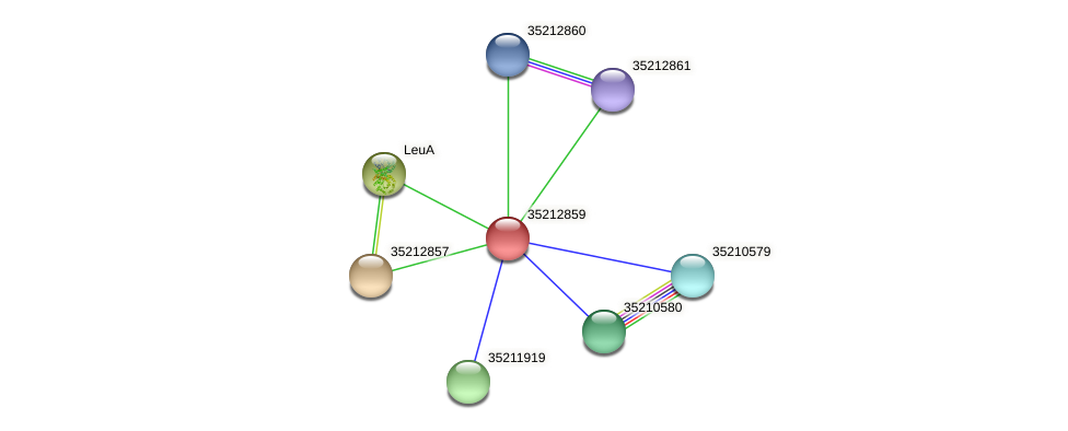 gll2291 protein (Gloeobacter violaceus) - STRING interaction network