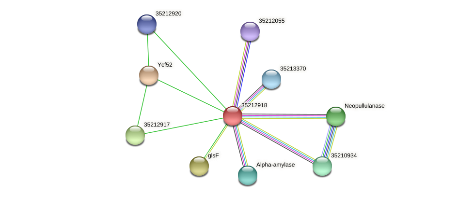 gll2350 protein (Gloeobacter violaceus) - STRING interaction network