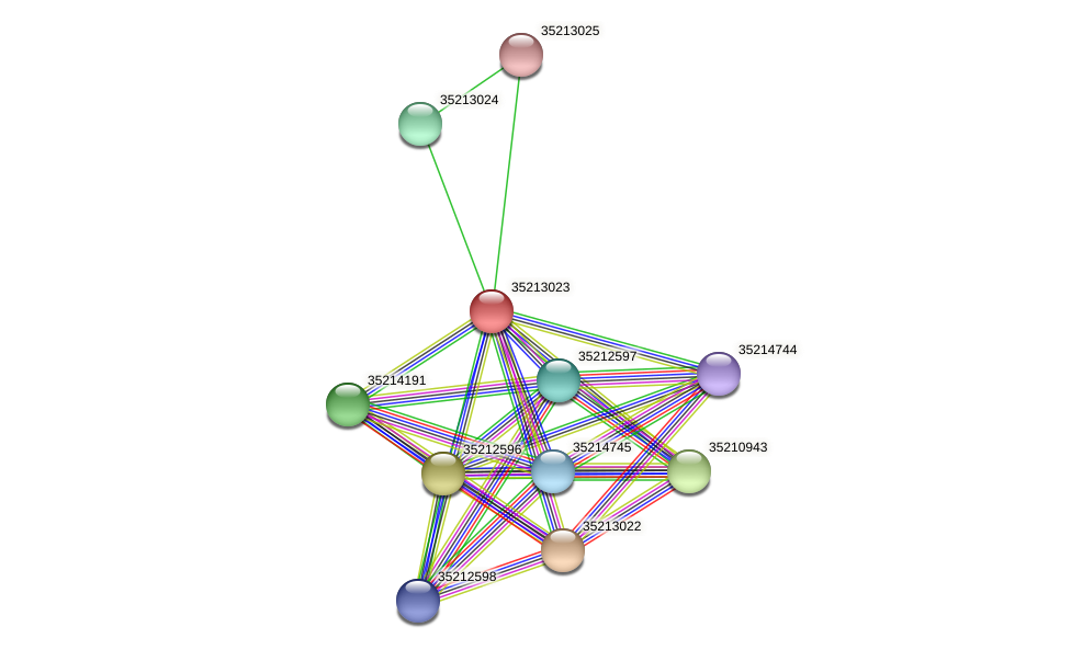 gll2455 protein (Gloeobacter violaceus) - STRING interaction network
