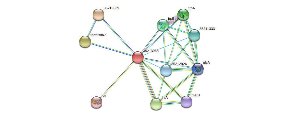 gll2500 protein (Gloeobacter violaceus) - STRING interaction network