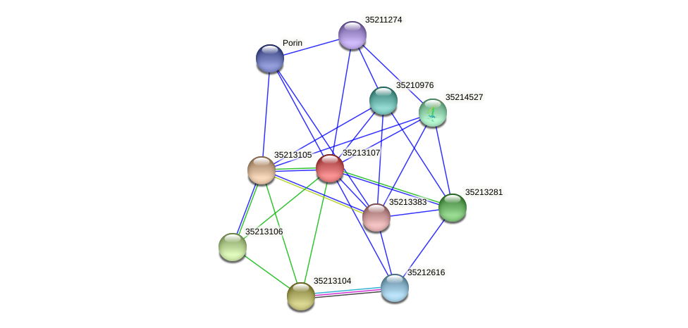 gll2539 protein (Gloeobacter violaceus) - STRING interaction network