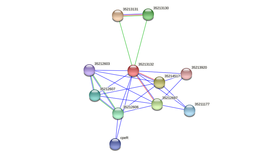 gll2563 protein (Gloeobacter violaceus) - STRING interaction network