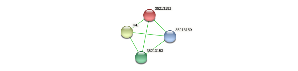 gll2583 protein (Gloeobacter violaceus) - STRING interaction network