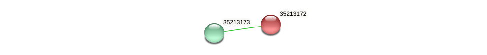 gll2603 protein (Gloeobacter violaceus) - STRING interaction network