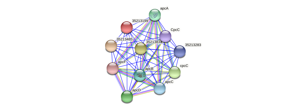 gll2630 protein (Gloeobacter violaceus) - STRING interaction network