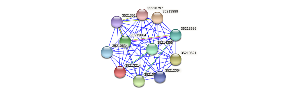 gll2645 protein (Gloeobacter violaceus) - STRING interaction network
