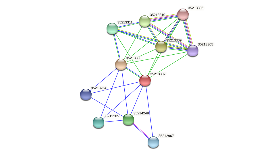 gll2738 protein (Gloeobacter violaceus) - STRING interaction network