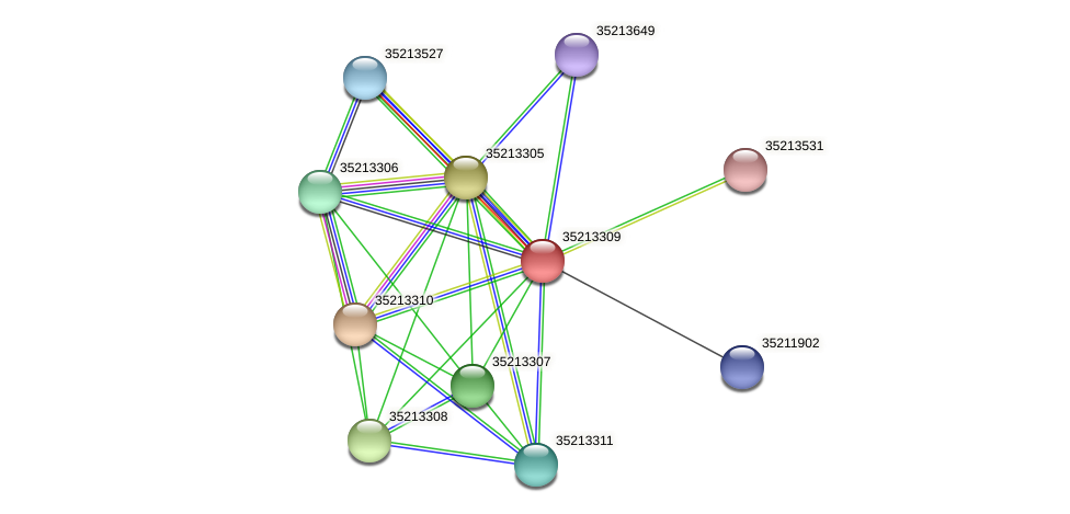 gll2740 protein (Gloeobacter violaceus) - STRING interaction network
