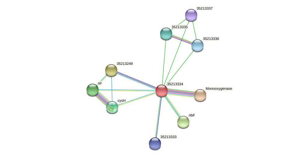 gll2765 protein (Gloeobacter violaceus) - STRING interaction network