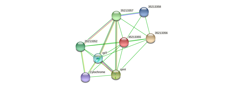 gll2786 protein (Gloeobacter violaceus) - STRING interaction network