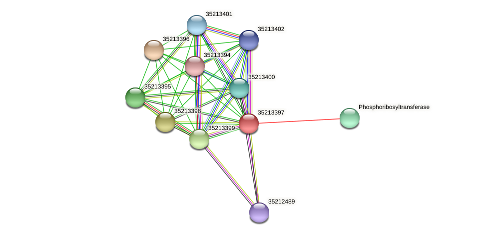 gll2827 protein (Gloeobacter violaceus) - STRING interaction network