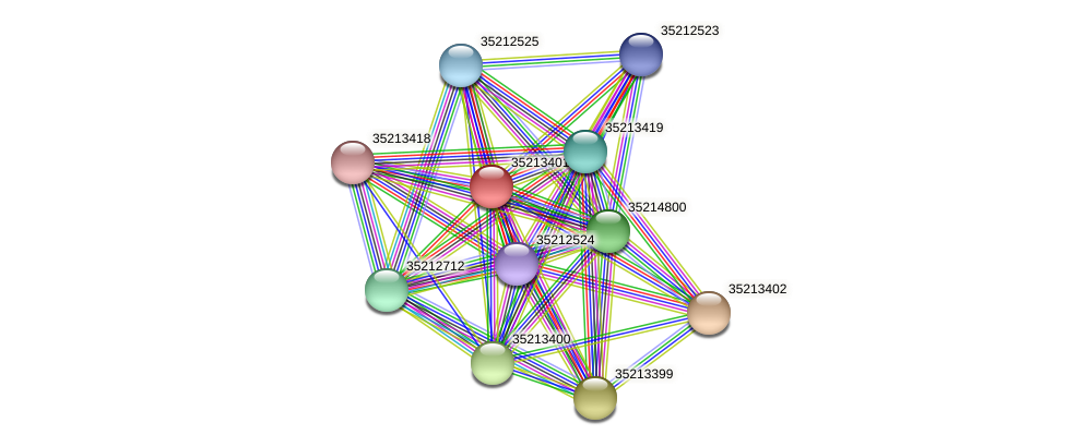 gll2831 protein (Gloeobacter violaceus) - STRING interaction network