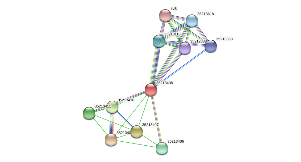 gll2838 protein (Gloeobacter violaceus) - STRING interaction network
