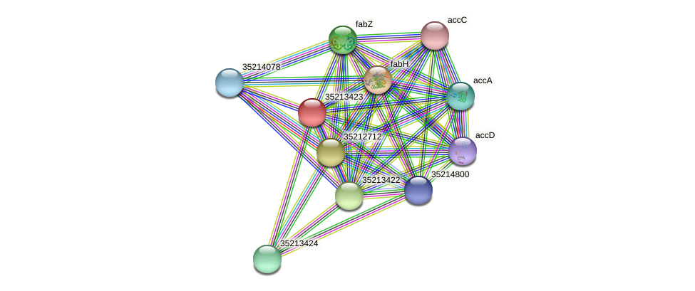 gll2853 protein (Gloeobacter violaceus) - STRING interaction network