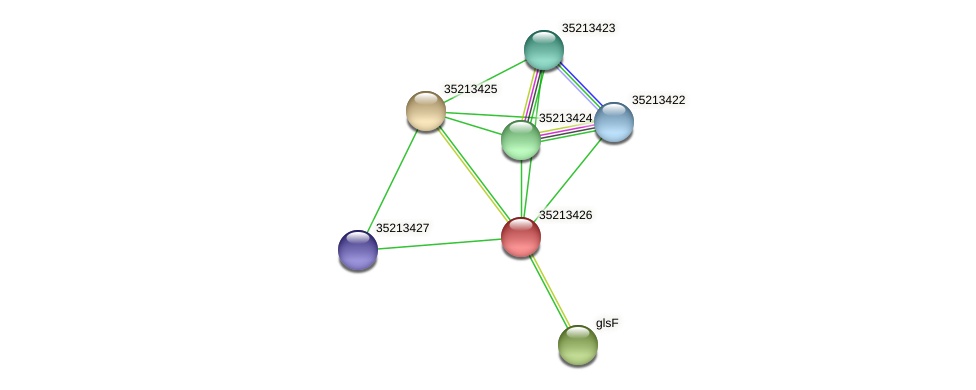 gll2856 protein (Gloeobacter violaceus) - STRING interaction network