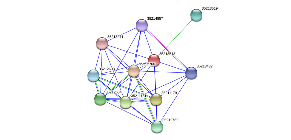 gll2948 protein (Gloeobacter violaceus) - STRING interaction network