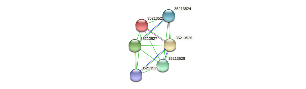 gll2955 protein (Gloeobacter violaceus) - STRING interaction network
